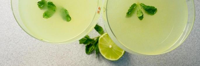 Hendrick's gin drink cocktail