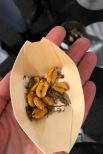 Gastro Helsinki 2018 ruoka ammattilais messut messukeskus hyönteisruoka hyönteinen sirkka entocube